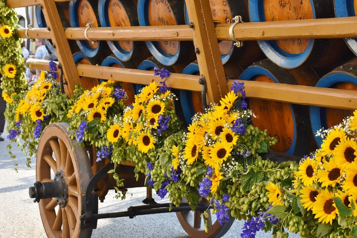 Larkspur are perfect for informal flower arrangements
