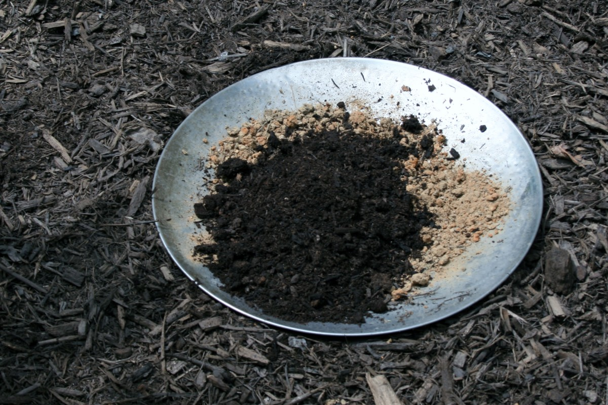 Then I added a few handfuls of composted manure and mixed the two together. I know it sounds gross, but many butterflies eat dung!