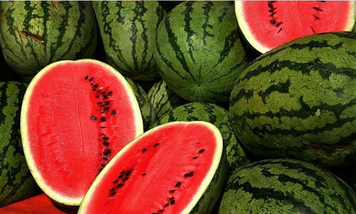 Nothing beats a nice, juicy watermelon on a hot day.