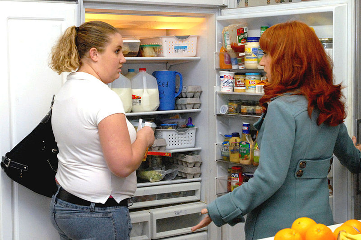 Leave the Fridge Door Open, or Open and Shut Multiple Times?