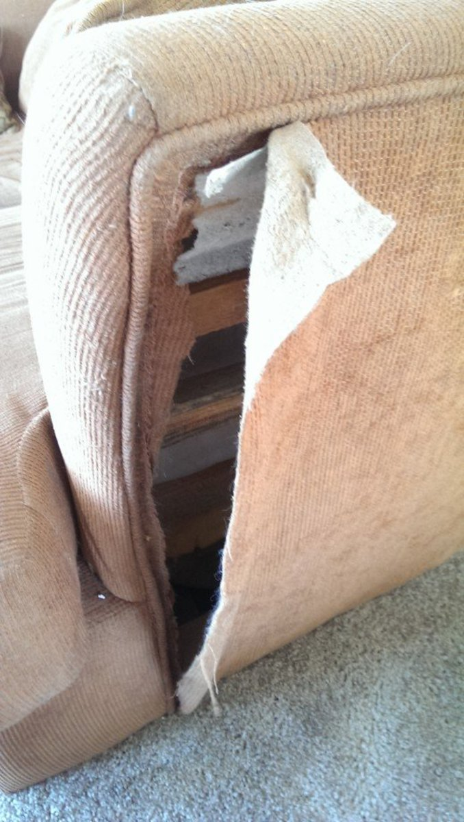 Cat damage for days. In this photo you can see the line of cording at the seam and the extra fabric allowance needed.