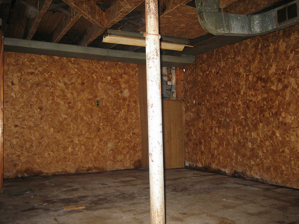 how to get rid of musty basement smells