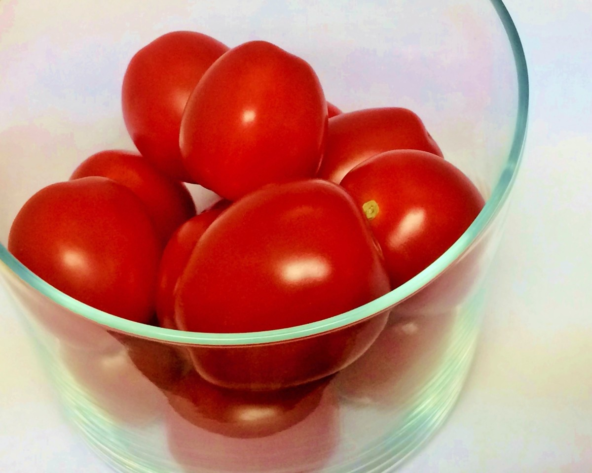 Good luck with a bountiful tomato harvest!