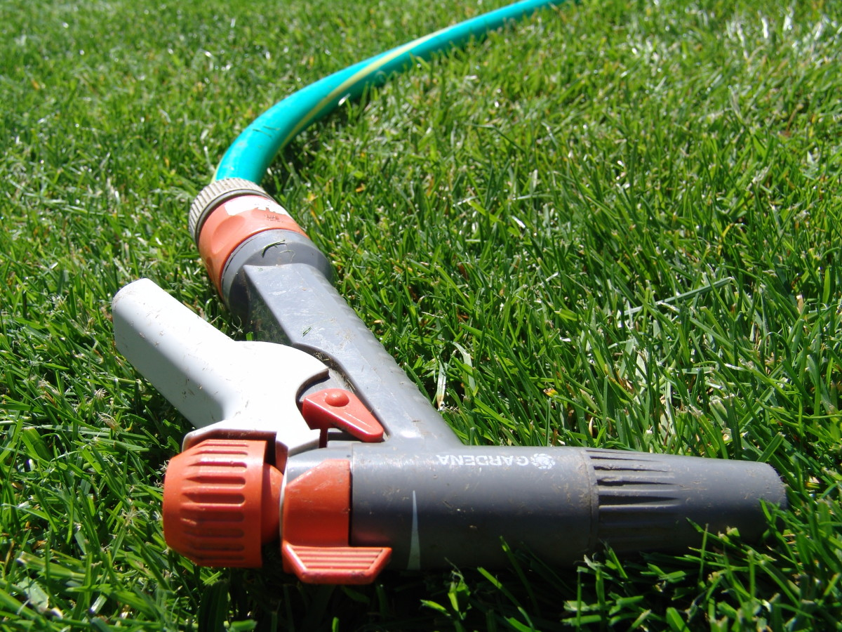 Running the garden hose will leach excess fertilizer away roots