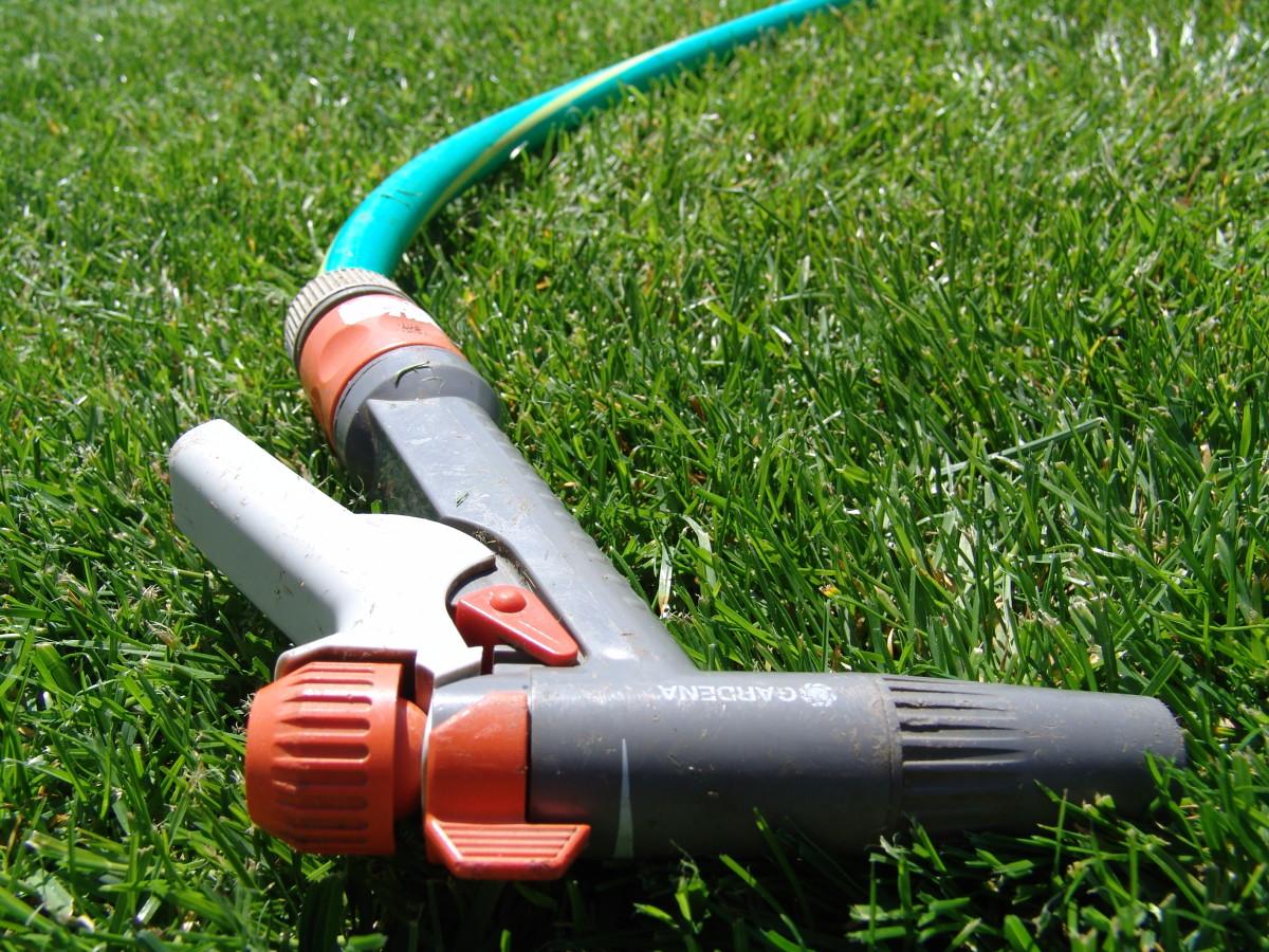 Running the garden hose will leach excess fertilizer away roots