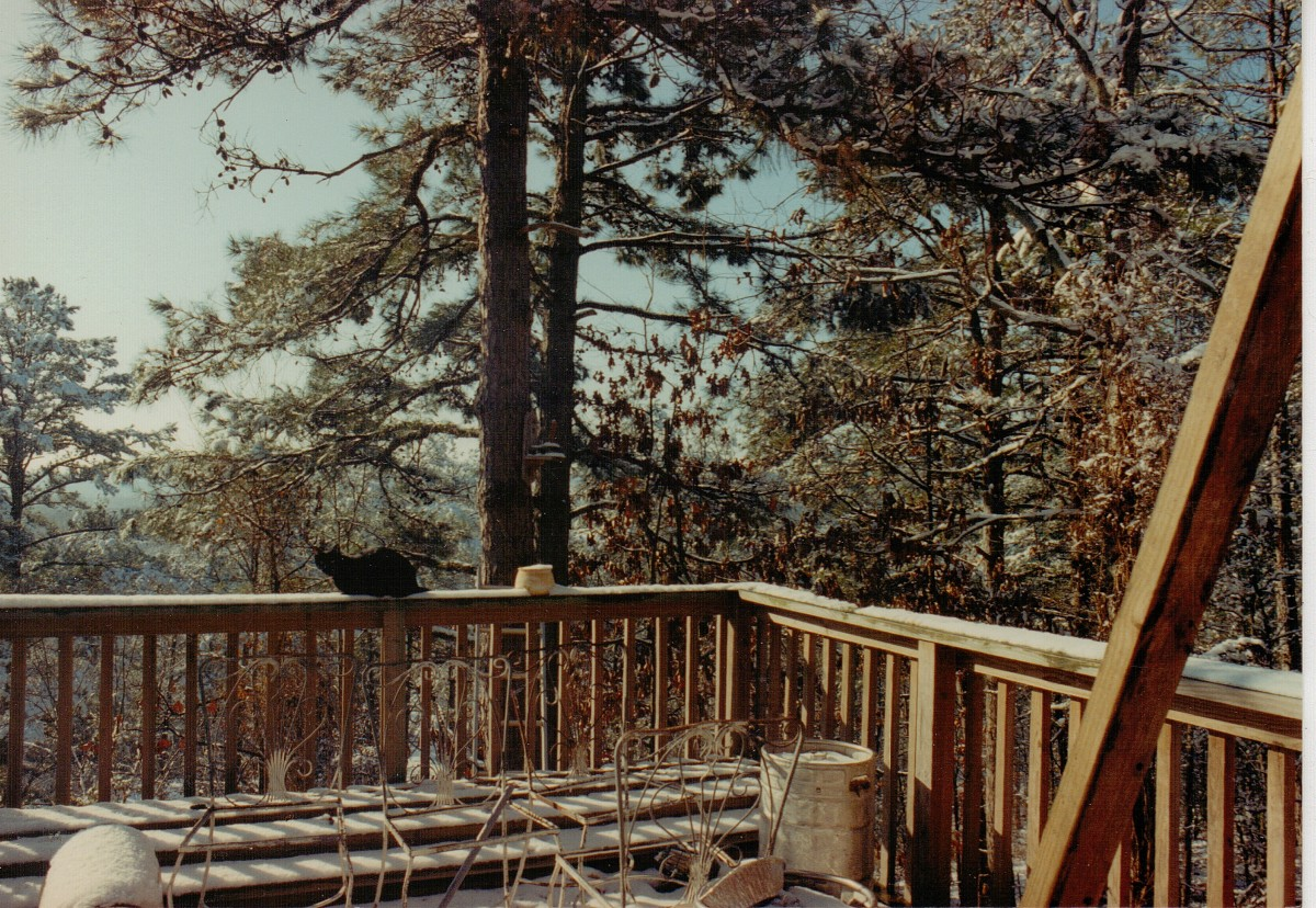 Snow scene with wood waiting to be built into third deck