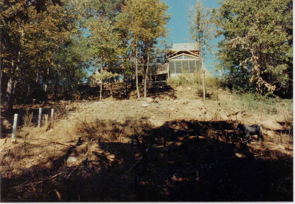 Back of the house showing greenhouse and decks