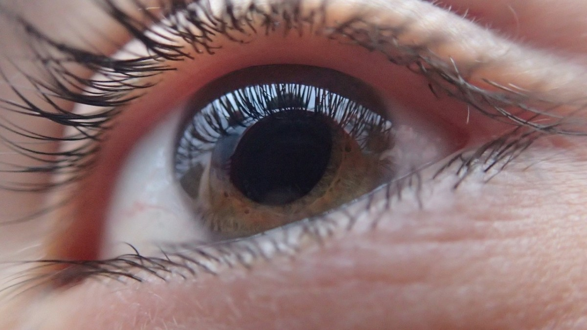 Vision without Glasses: a safer alternative to laser eye surgery