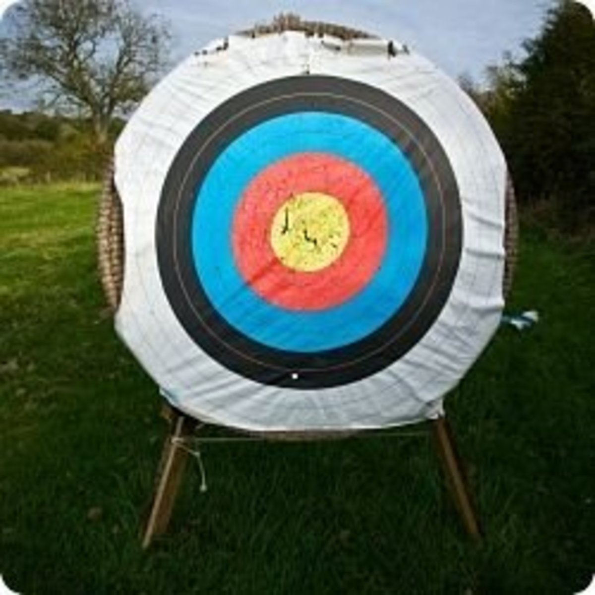 Archery Target Backstop with traditional target.