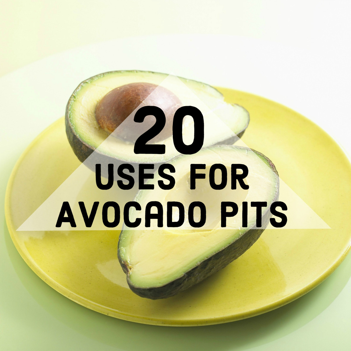 Don't just toss that avocado pit! Discover some fun and thrifty ways you can use it.