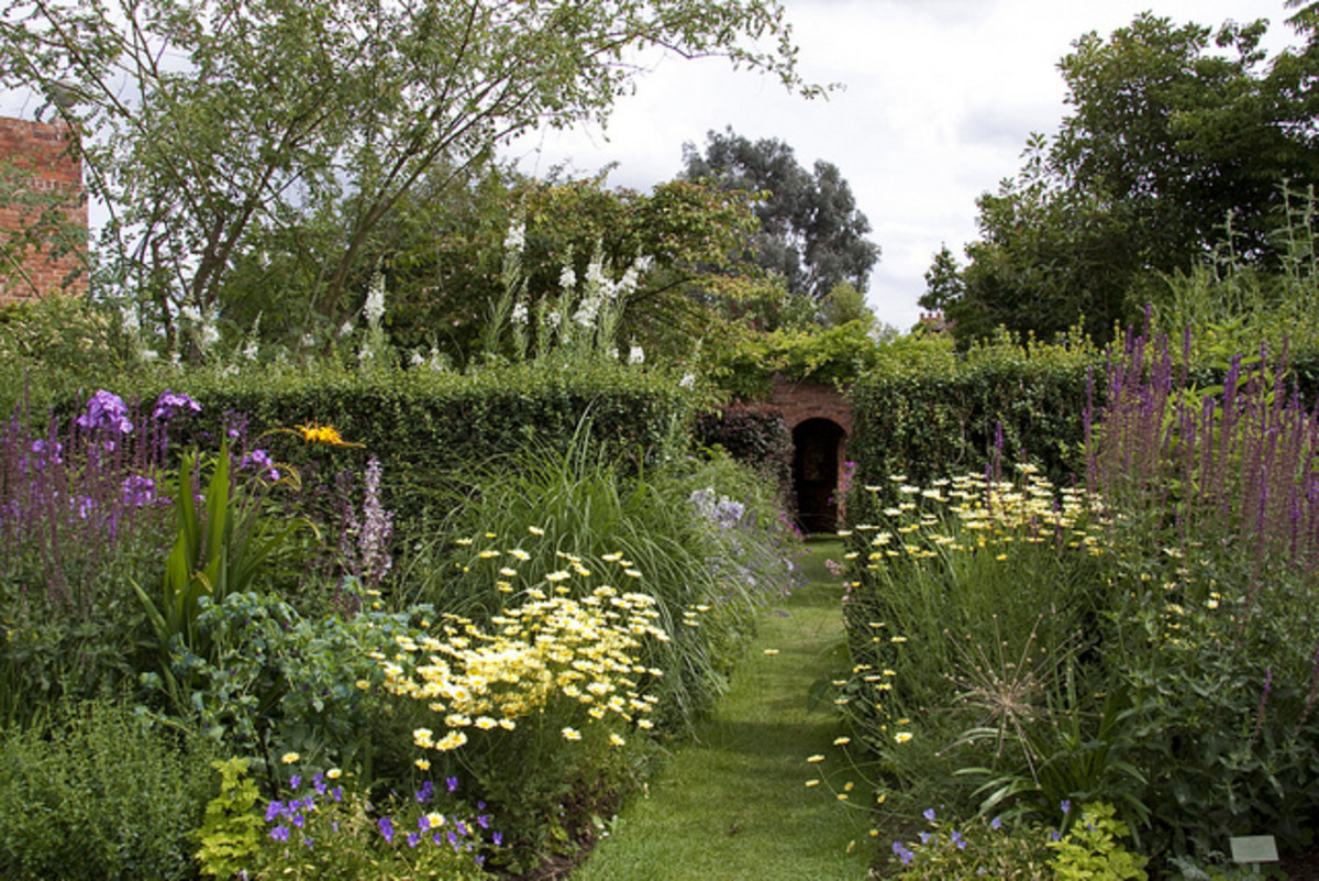 Border of perennial plants only seems effortless. It requires careful planning and regular care.
