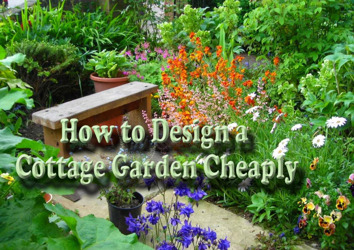 How To Design A Cottage Garden Cheaply Dengarden Home And Garden