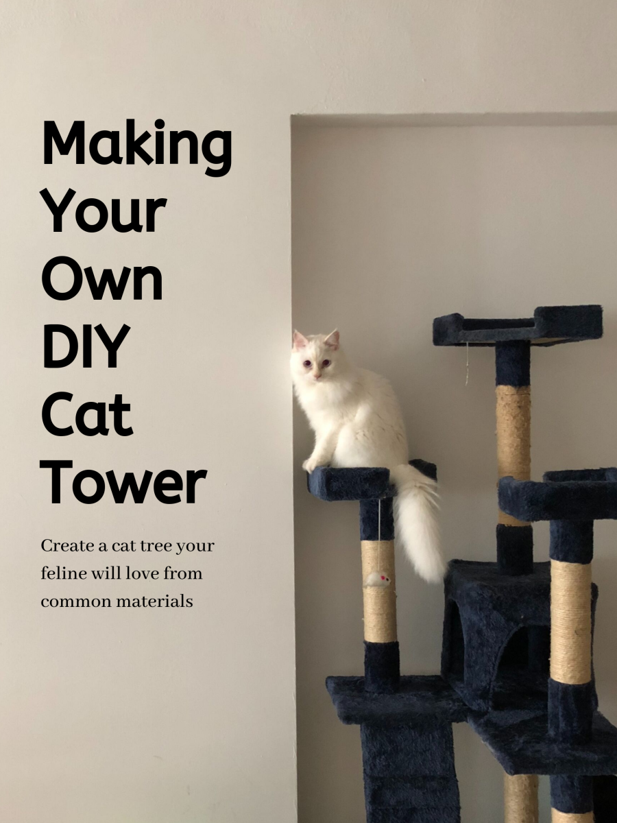 This article will break down how we made our own cat tree and how you can too!