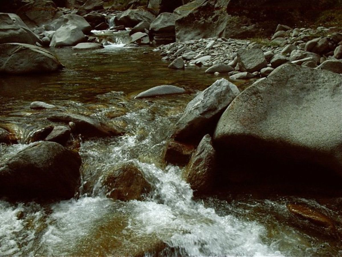 Purifying water in the backcountry