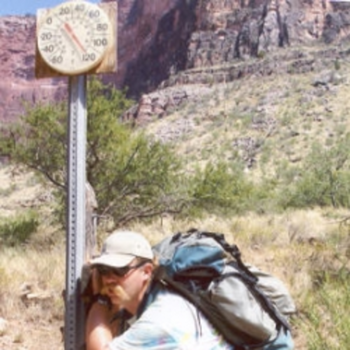 At Indian Garden -- halfway down the Bright Angel Trail -- in July.