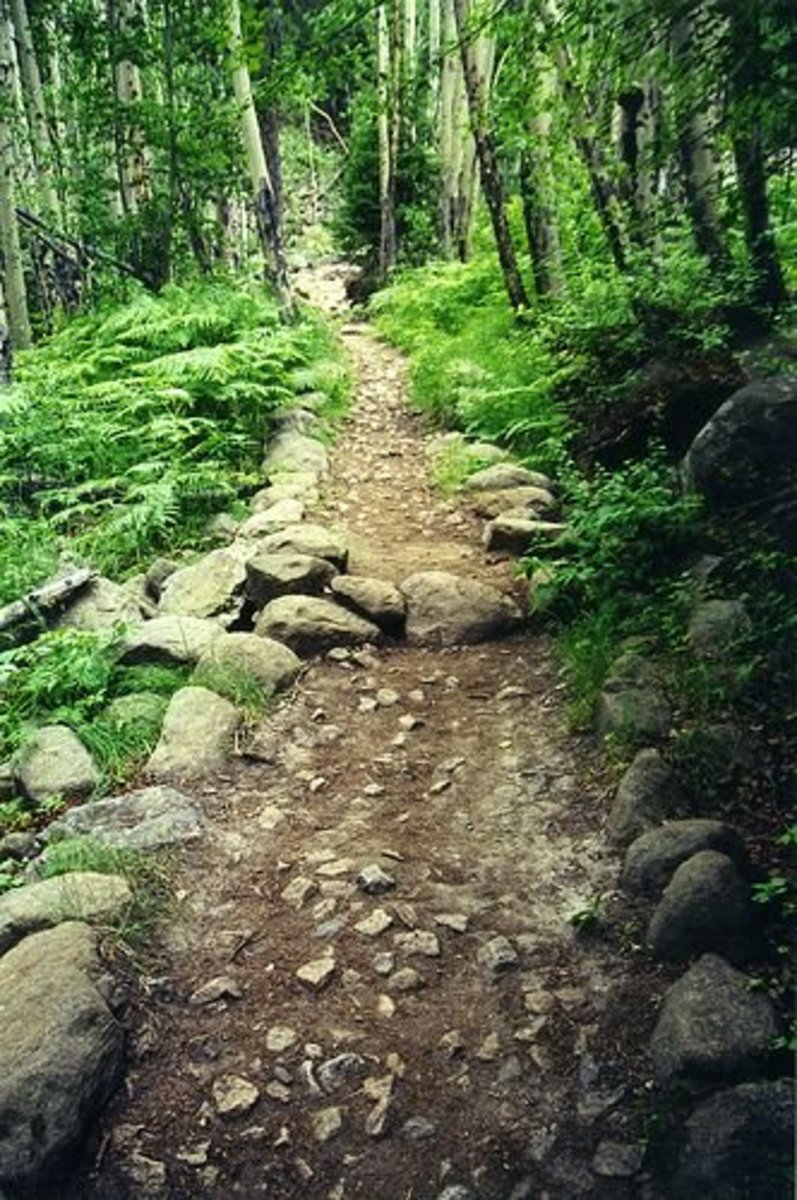 Planning a Colorado Trail Section Hike: Silverton to Durango