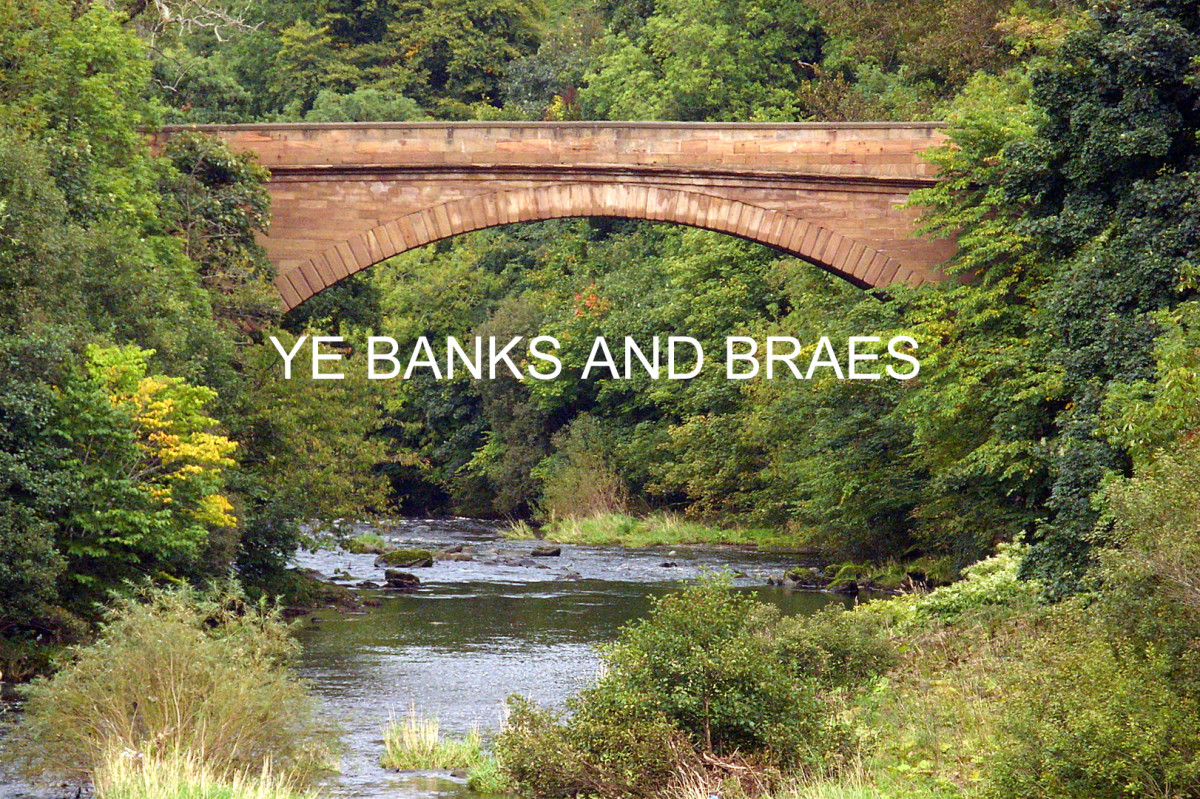 Ye Banks and Braes: Fingerstyle Guitar Arrangement in Tab, Notation and Audio