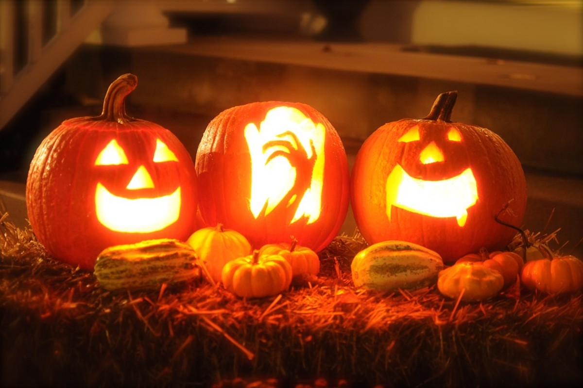 Not all pumpkins are equally suited to Jack-o-Lantern carving, so it's important to know what you're looking for.