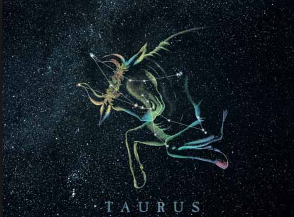 Having a Crush on a Taurus: Your Guide to Everything You Need to