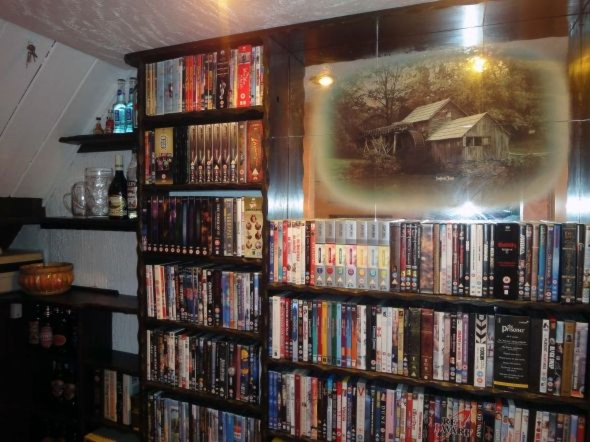 Bookcase for storing DVDs