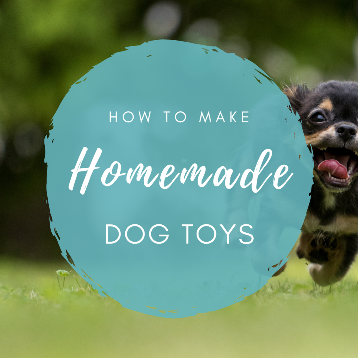 How to Make Your Own Homemade Dog Toys