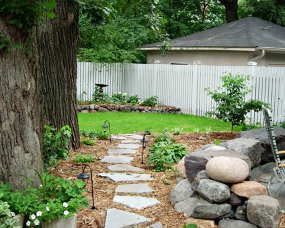 Stone foot path through mulch