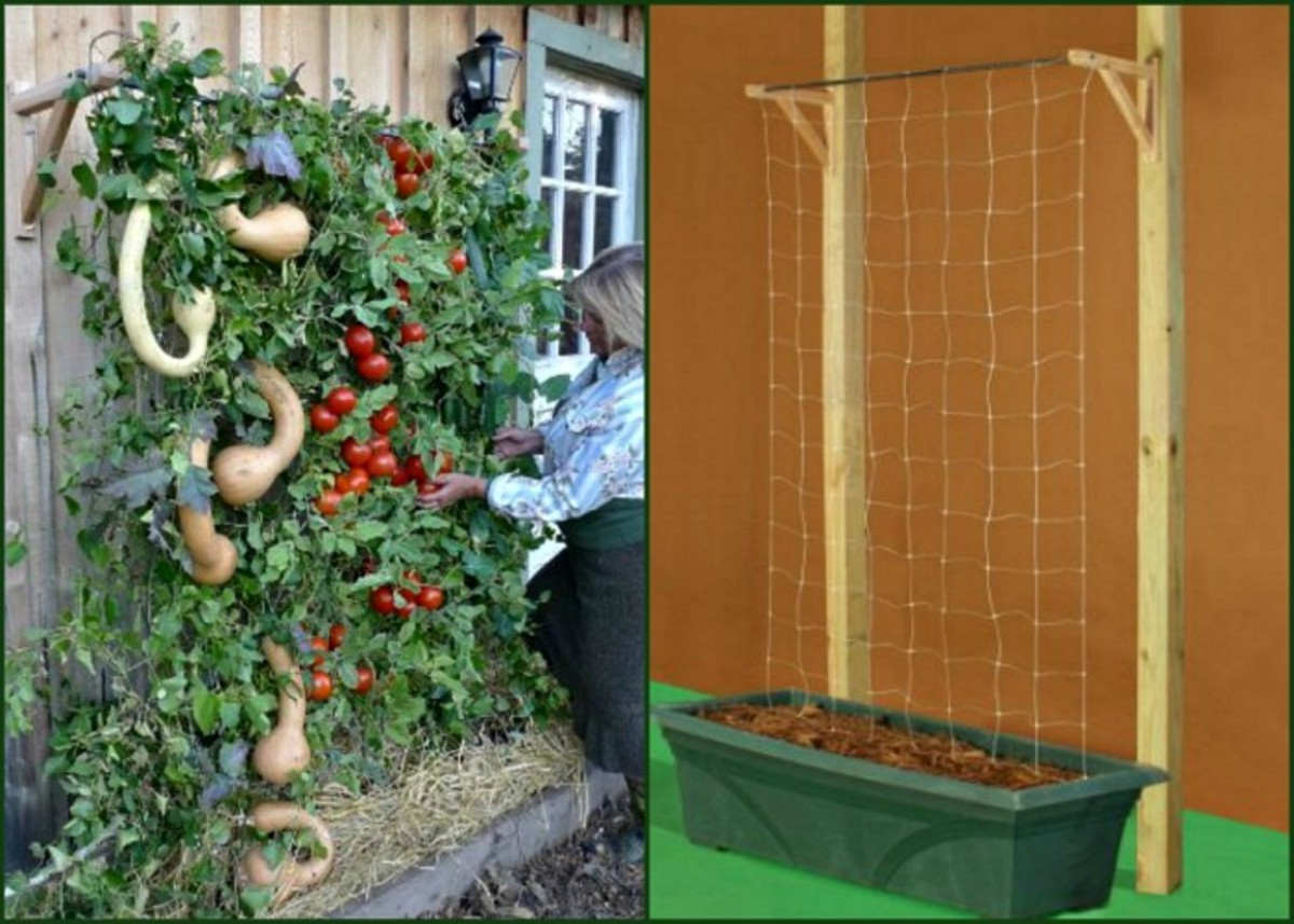DIY Vertical Patio Tomato Planter Idea