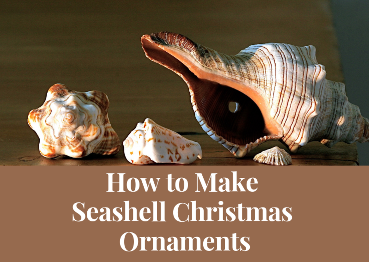 Read on to see some great seashell Christmas ornament ideas and tutorials!