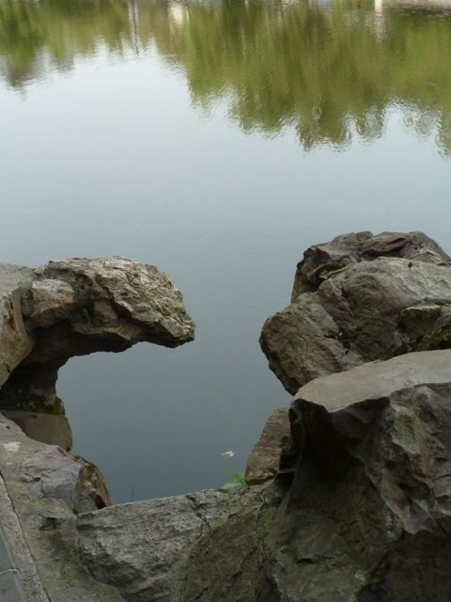 Chinese garden rocks and pond