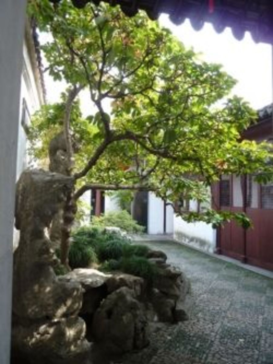A glimpse of the courtyard at the Master of the Nets Garden.