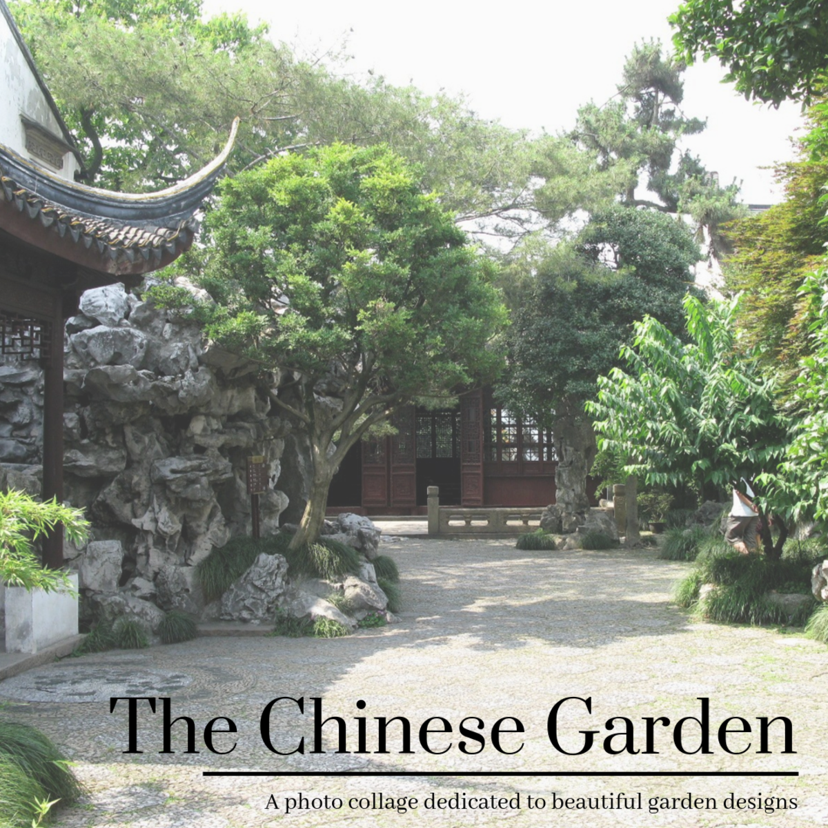 This photo collage showcases various common elements of Chinese garden design.