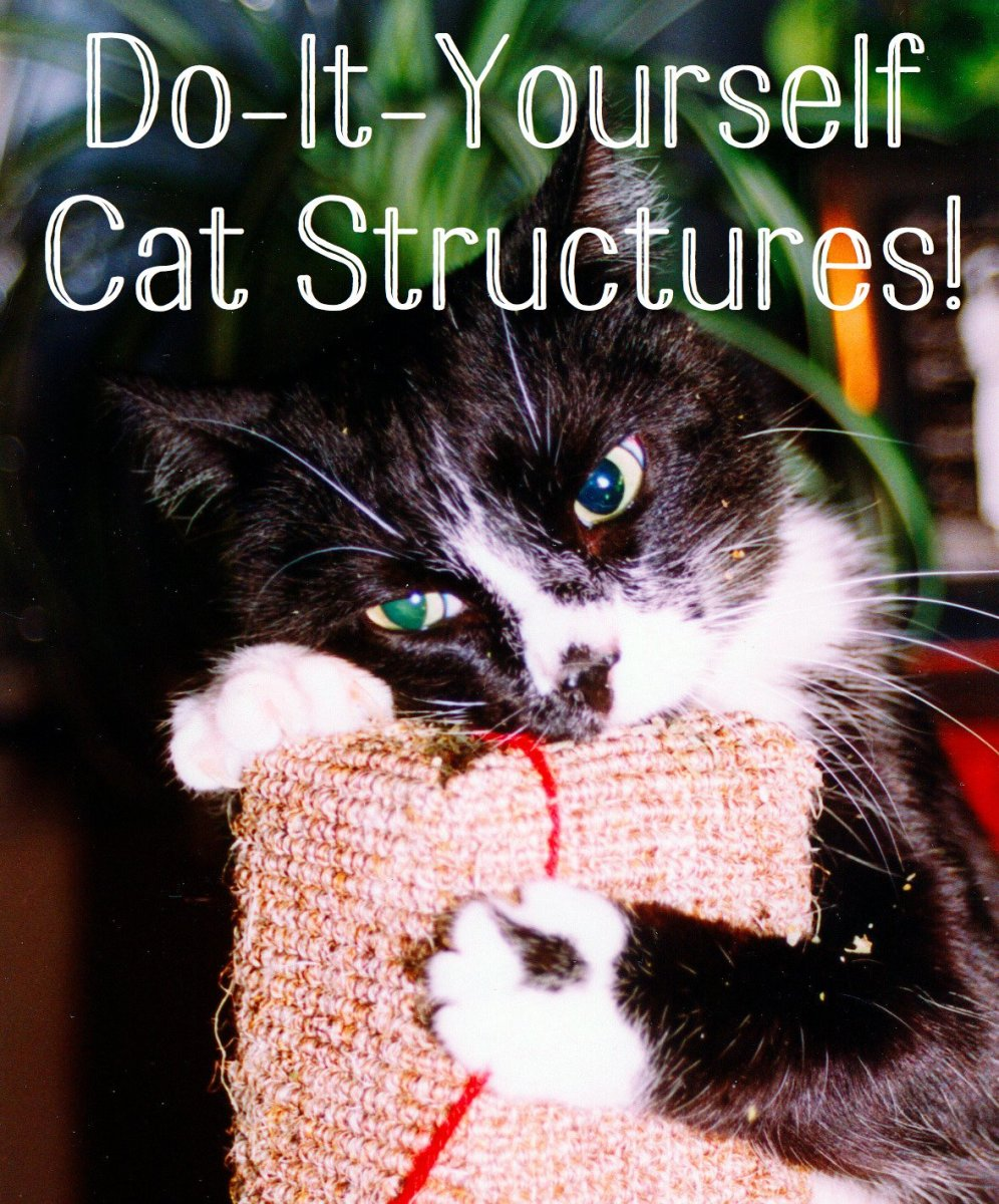 Make Your Own Cat Trees, Towers, and Other Structures