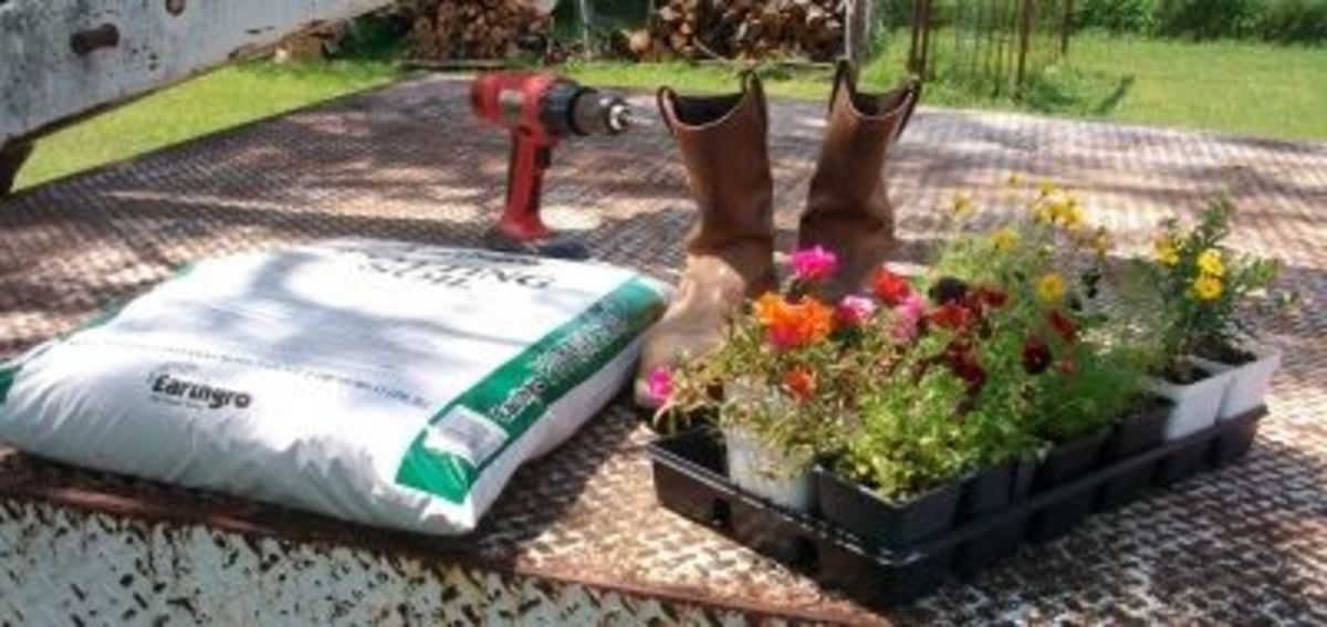 Supplies and tools you need for making boot planters