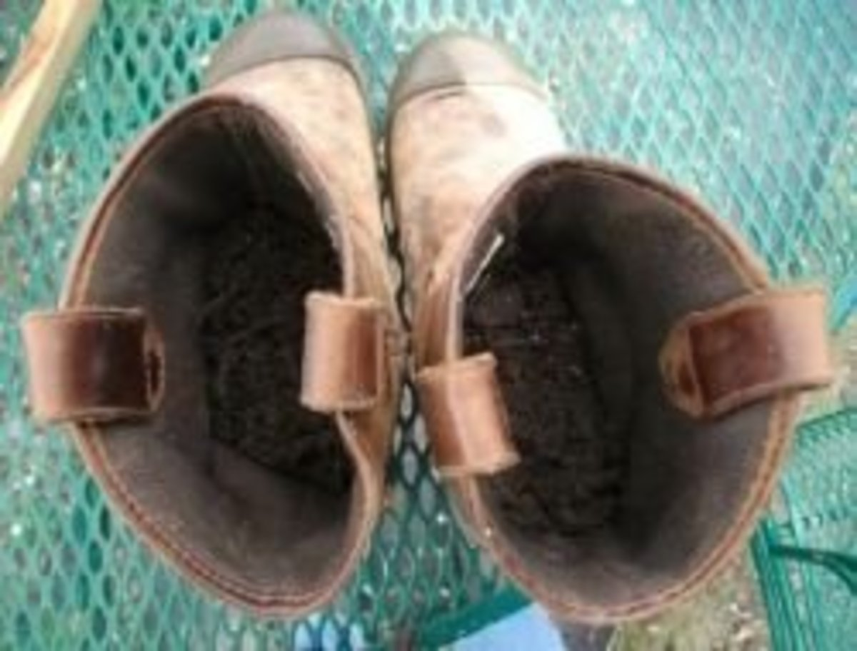 Fill old boots with potting soil