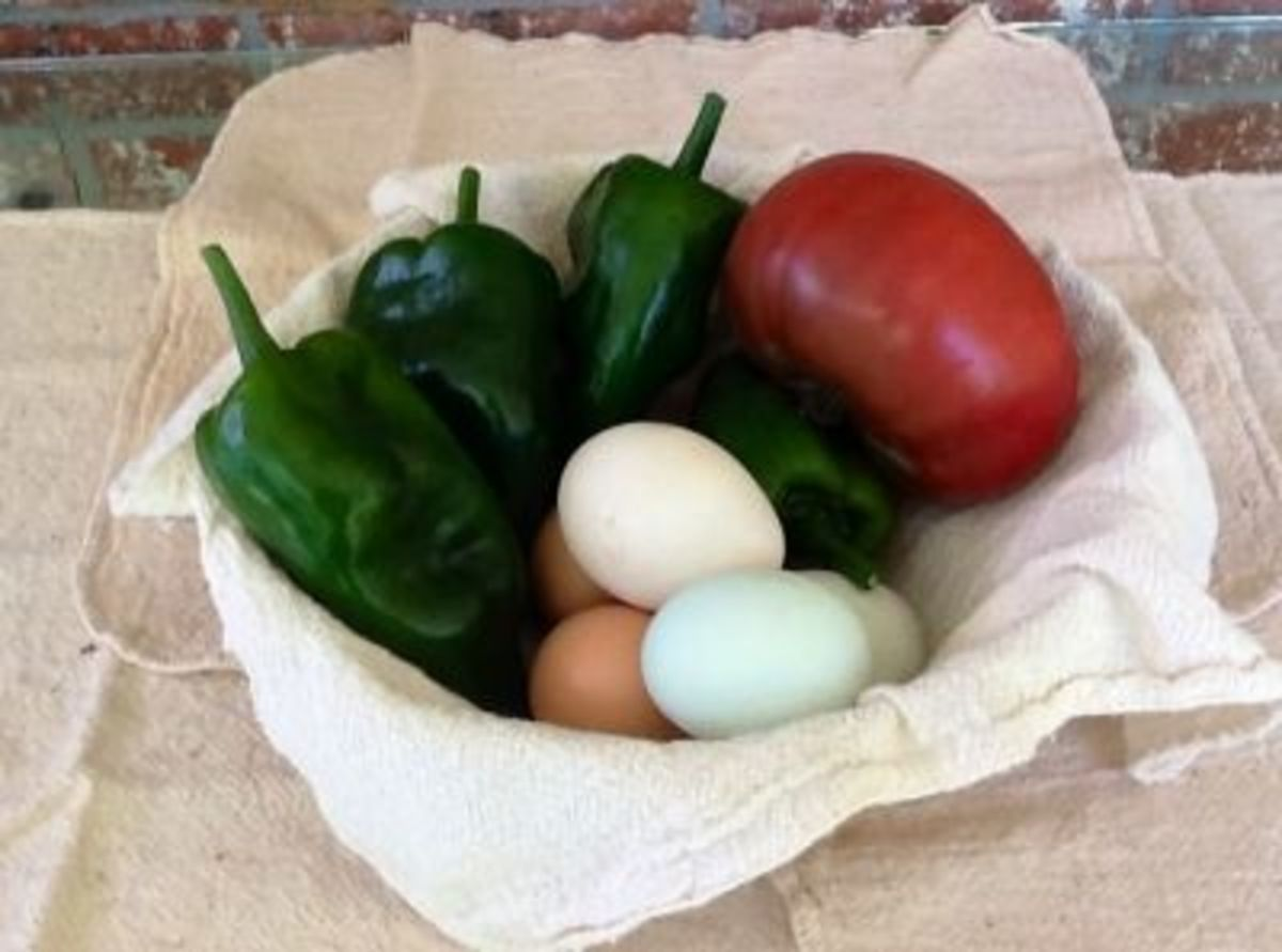 Benefits of Sustainability - Fresh Organic Vegetables and Yard Eggs