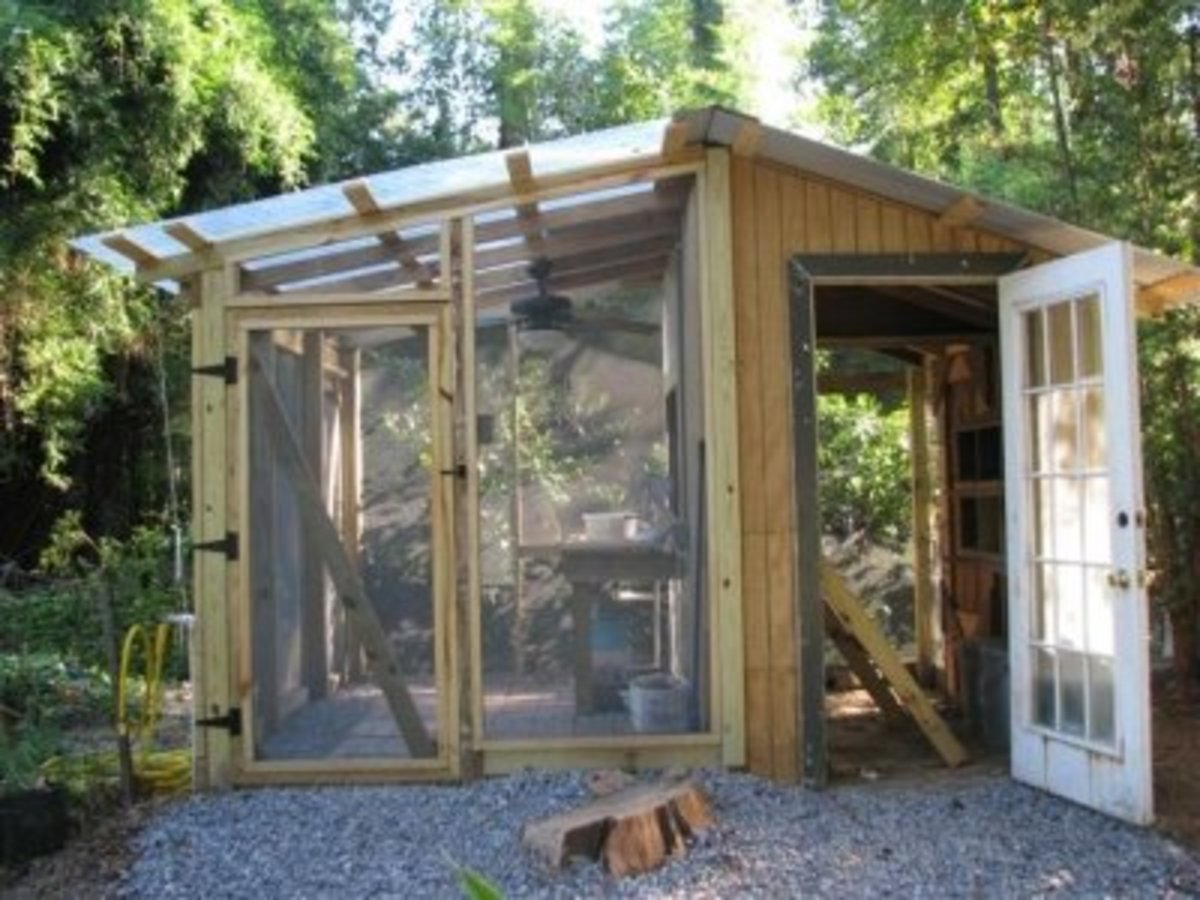 Our Hen House and Greenhouse Duplex