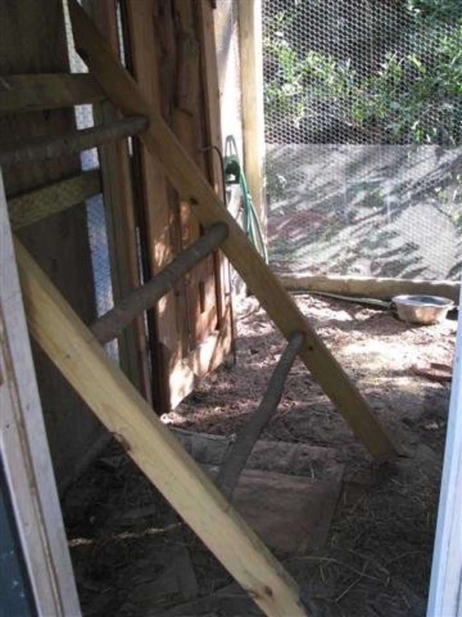 Movable Roost Down