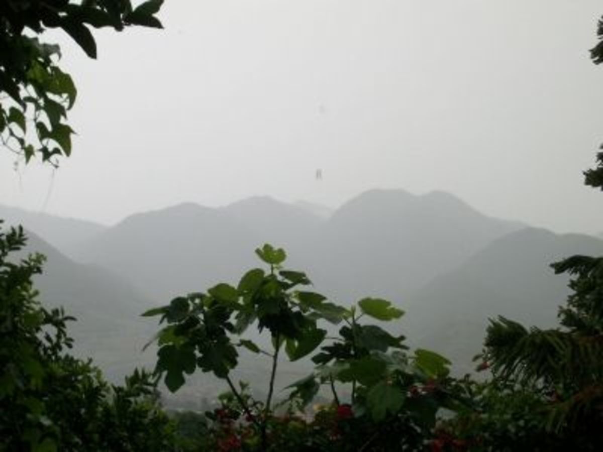 Lovely Rainy Day Photo