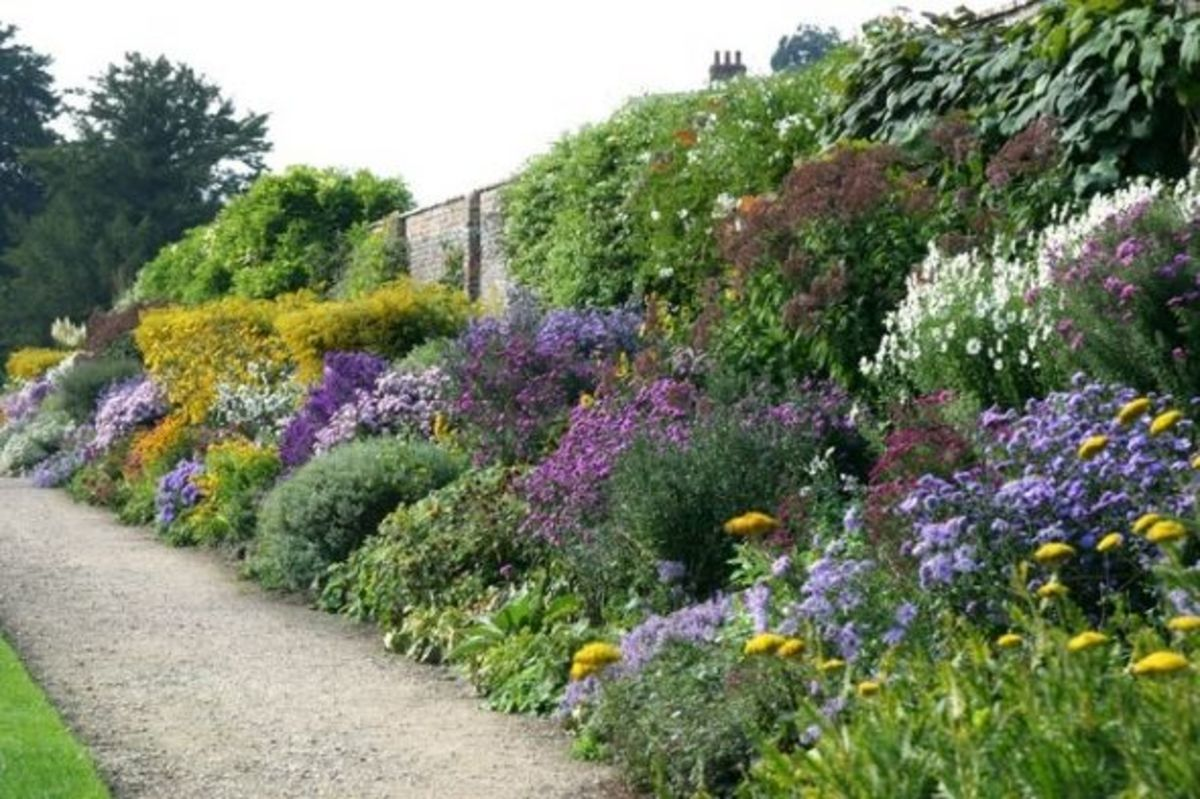 Where flower borders became famous: England.