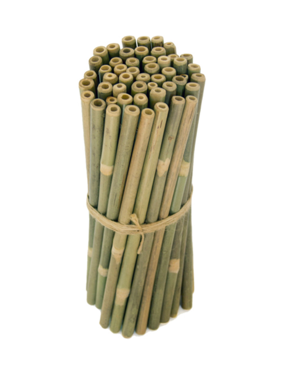 25 pack of reusable bamboo drinking straws.
