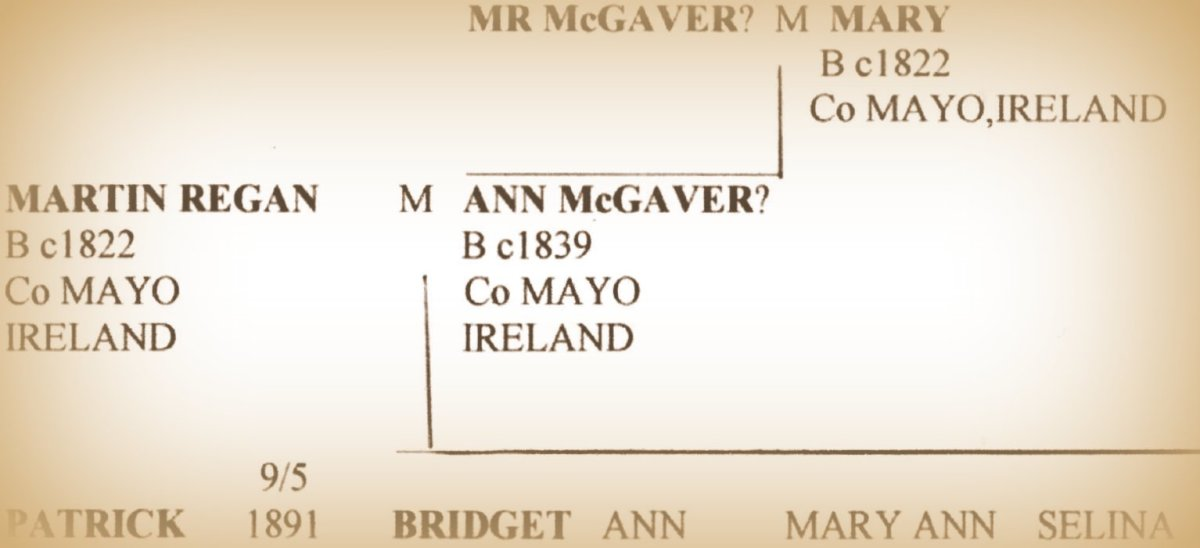 Tracing Irish Ancestry Online: A Beginner's Guide