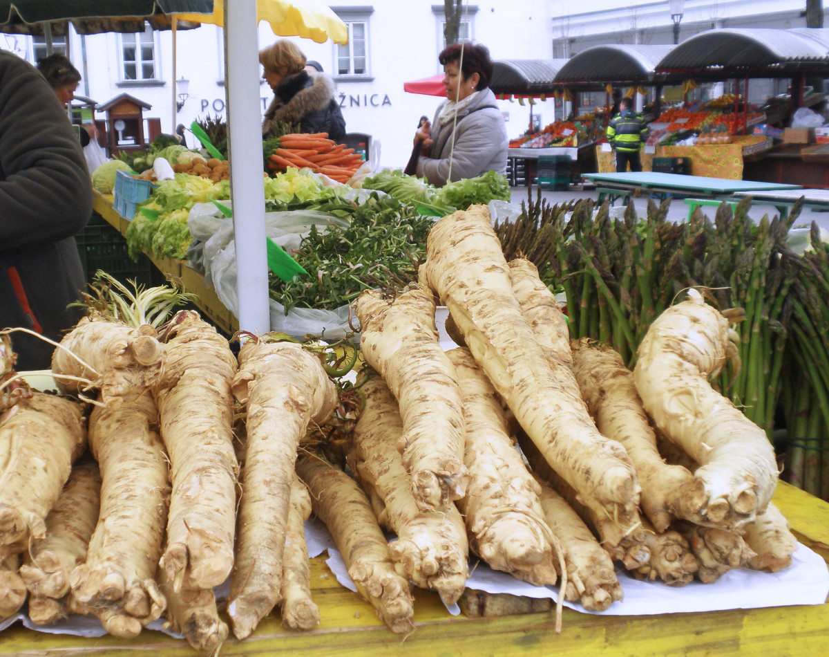 Horseradish's first harvest is often its best tasting. But you can always replant the following year for another tasty debut harvest.