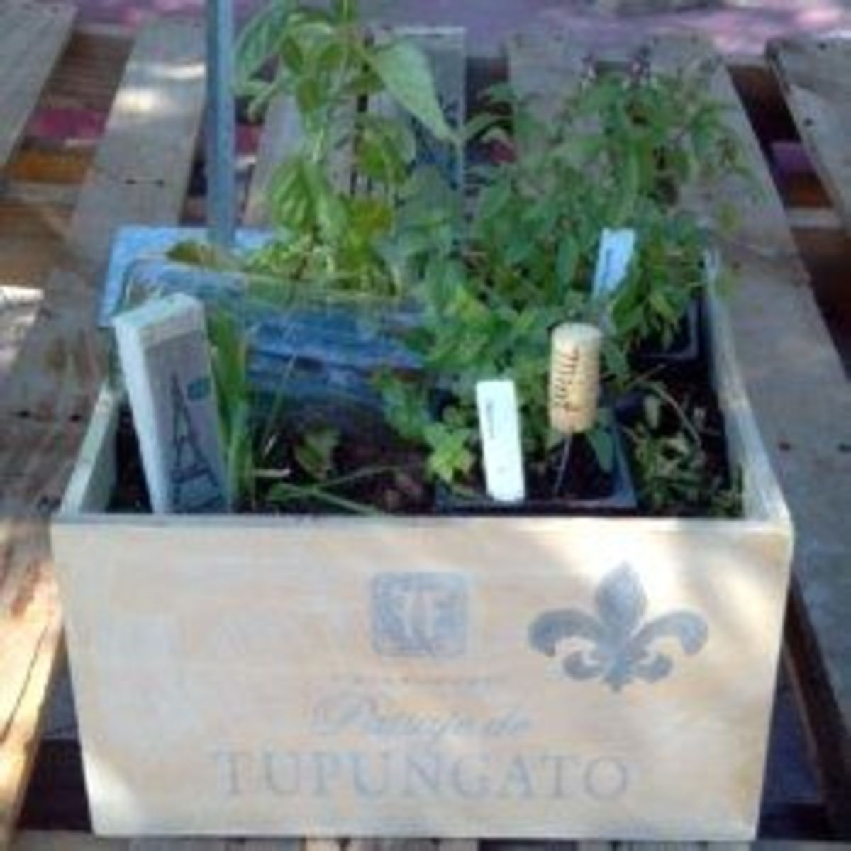 Add plant labels to your garden.