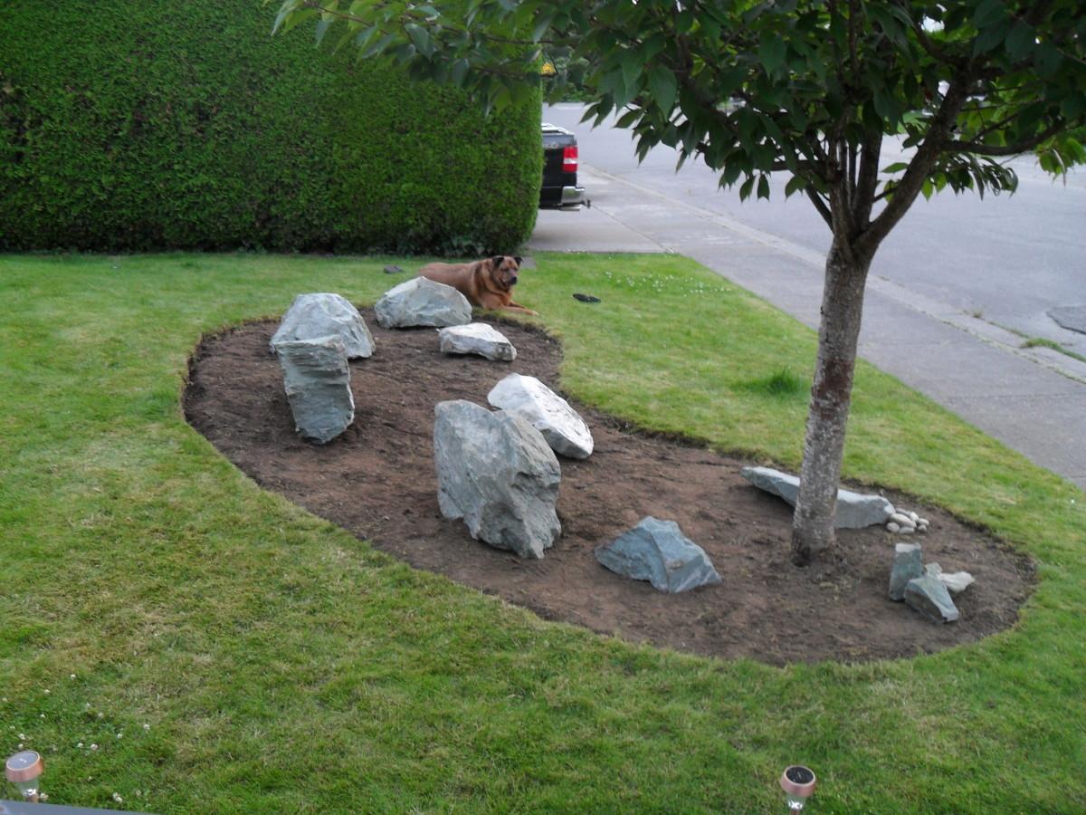Placing Rocks in My Garden