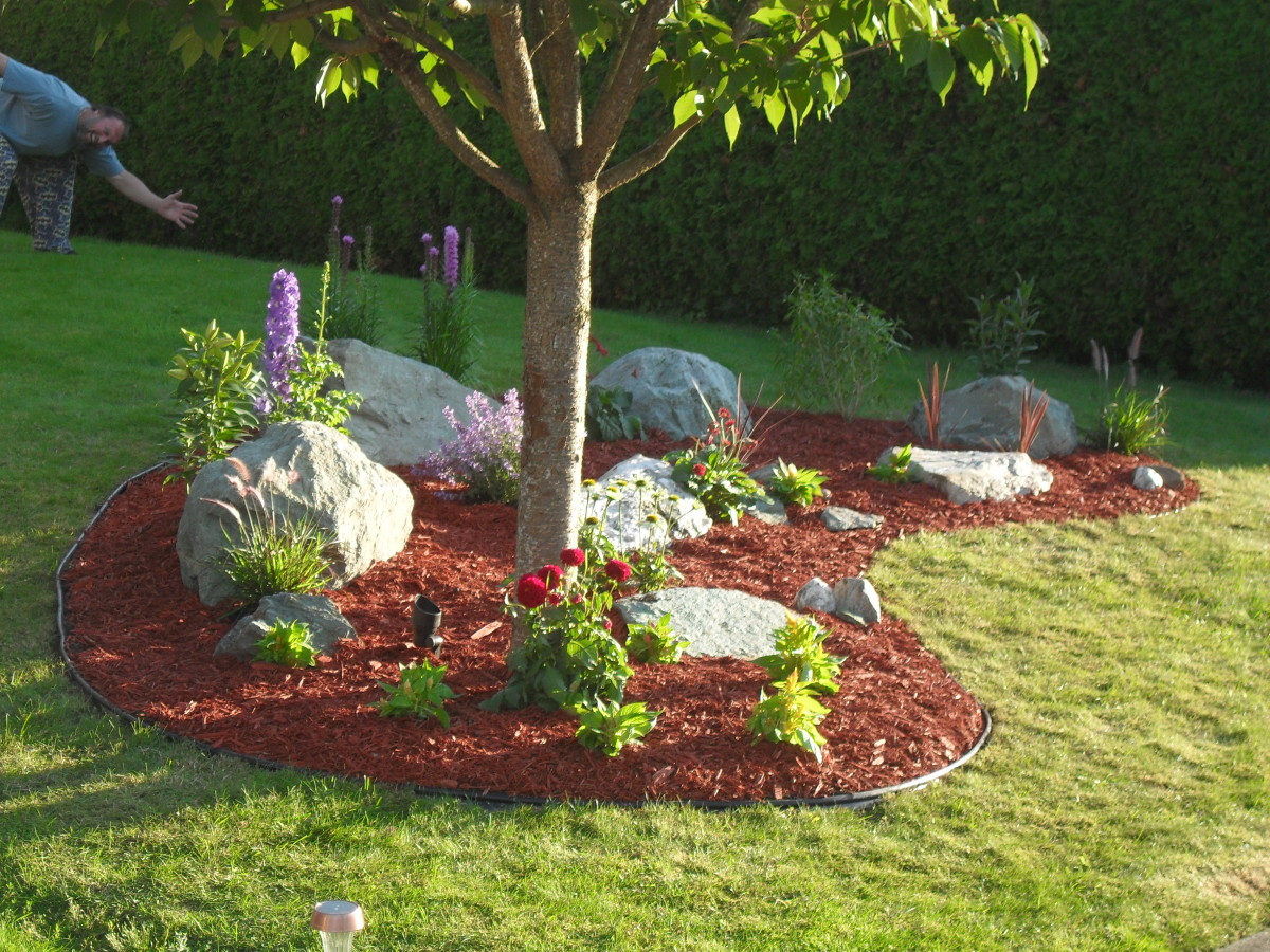 Our Completed Rock Garden!