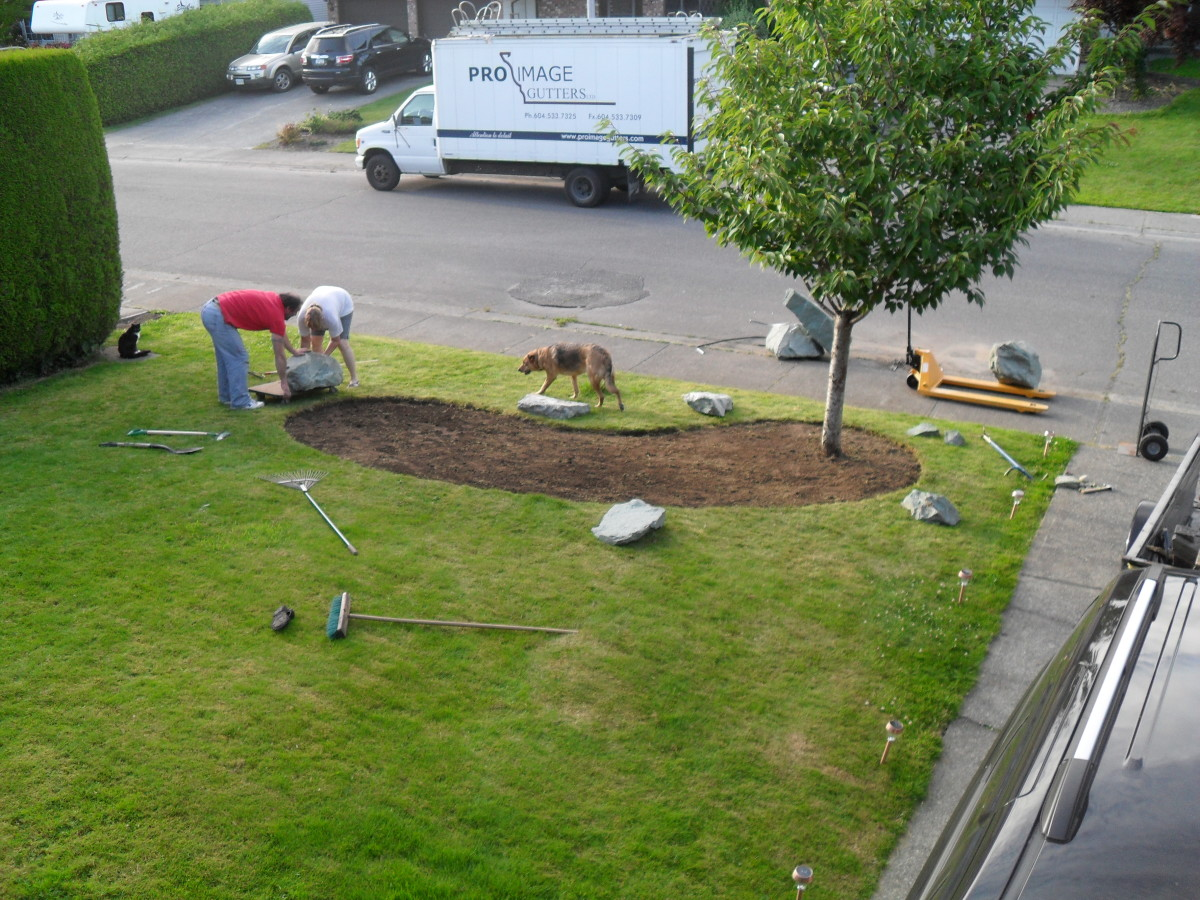 Removing the Sod for Our Rock Garden