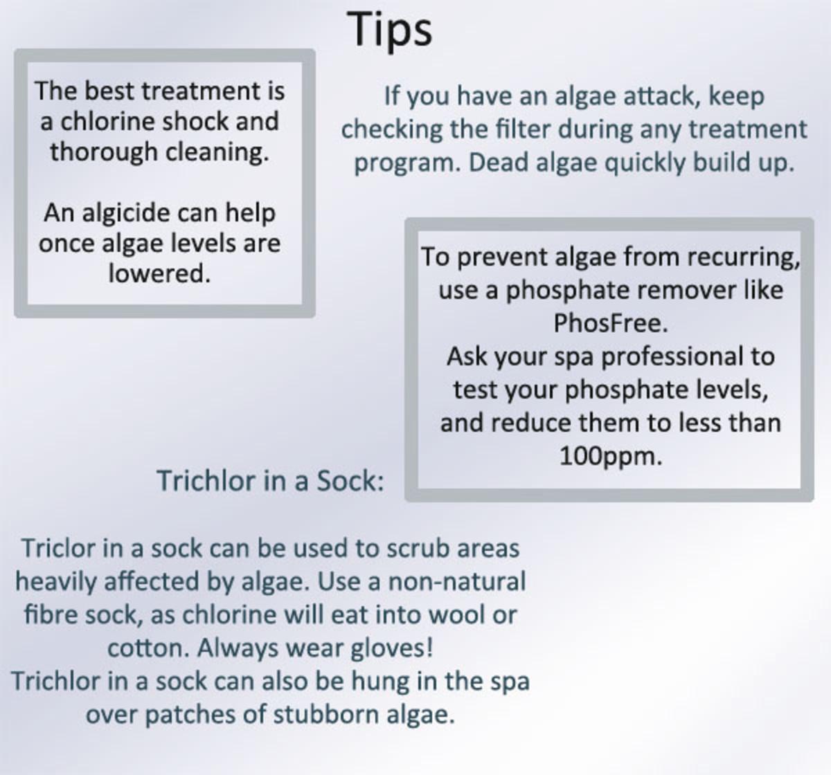 Eradicate algae in swimming pools and spas.