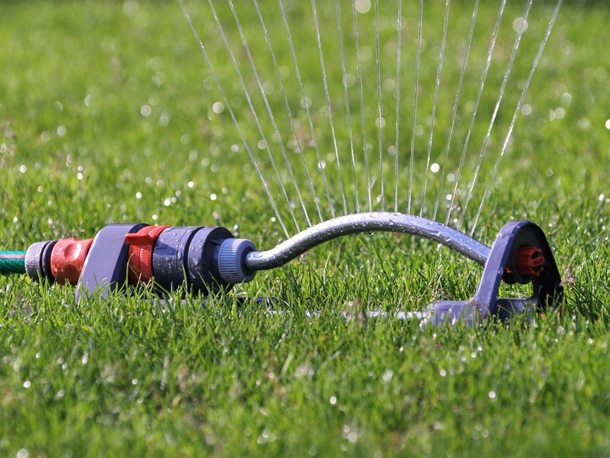 Water sprinkler.