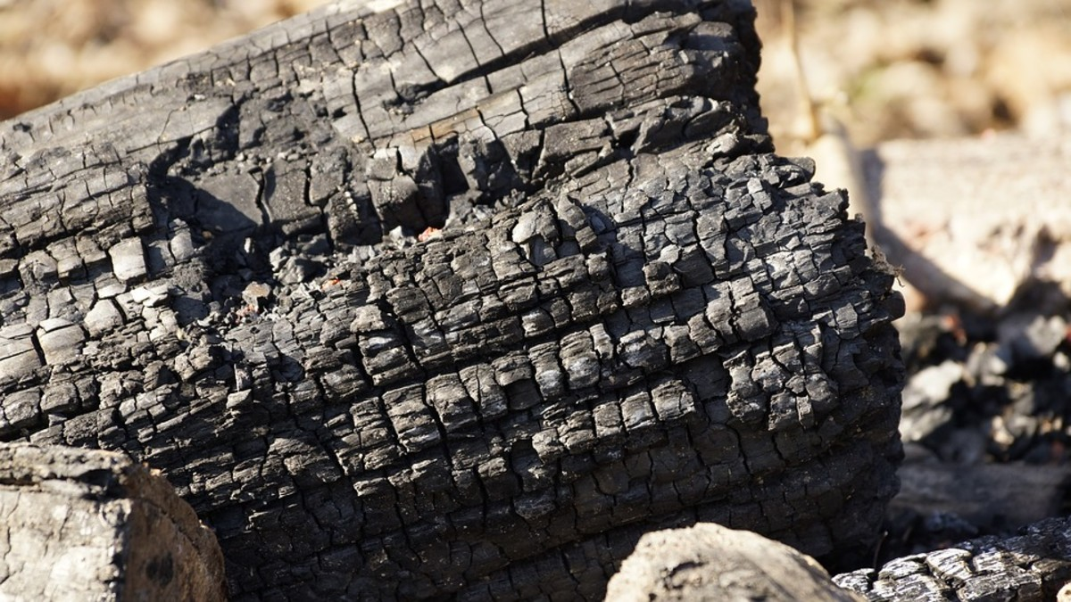 This wooden log is charred through and through. A body with 6th Degree burns looks much the same.