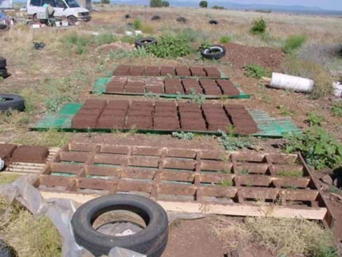 Drying adobe bricks to be used in building fireplaces.